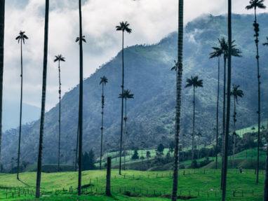 Que faire, que voir, que visiter en Colombie