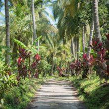 que faire autour de santa marta playa los angeles tayrona voyage en colombie