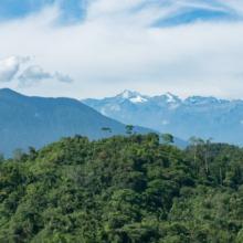 Seydukwa, visiter une famille indigène lors d'un voyage en colombie