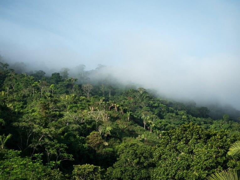 Agence de voyage en Colombie