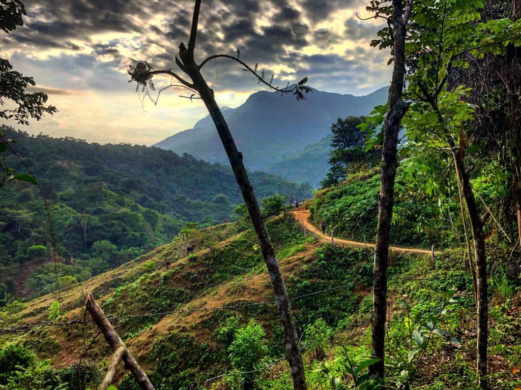 Trek à Ciudad Perdida, la Cité Perdue en Colombie