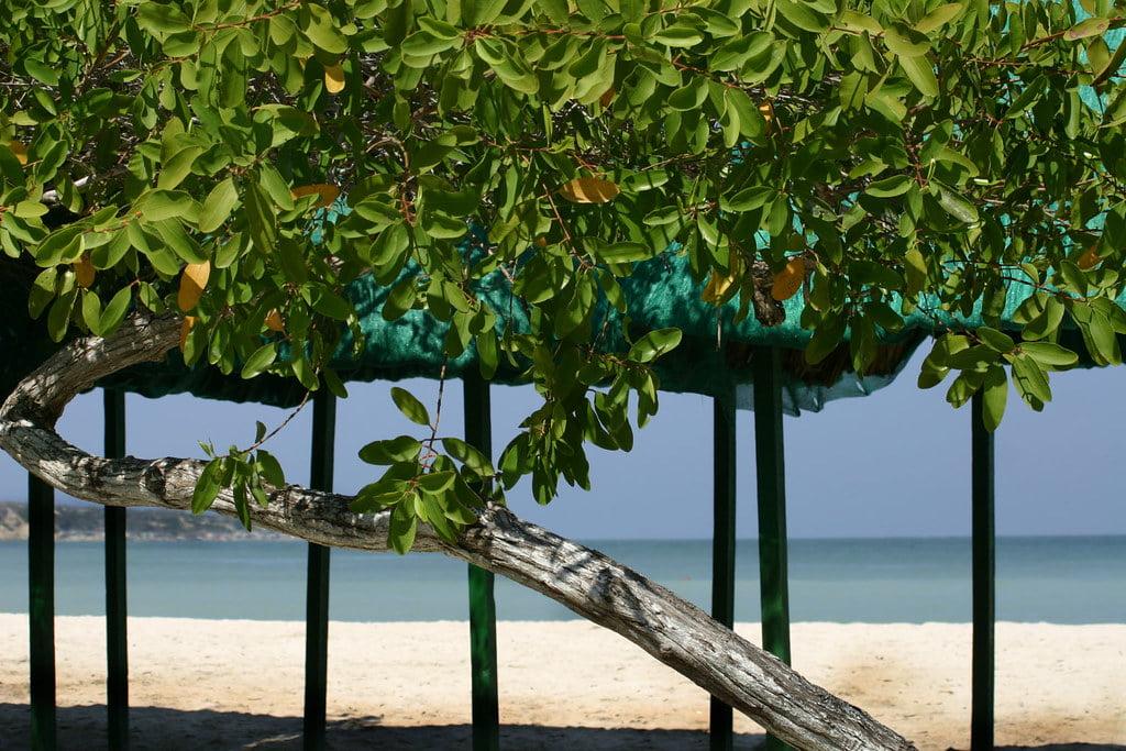 Isla Tierra Bomba, les plages où se baigner à Carthagène en Colombie