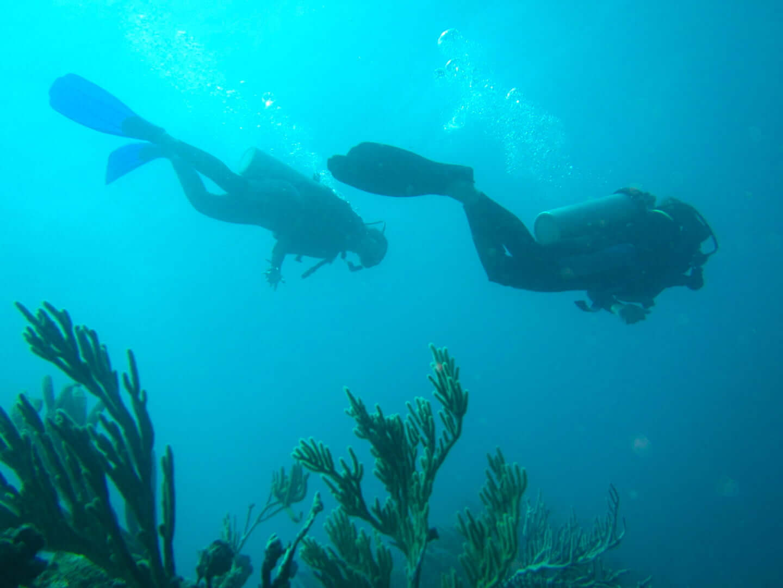 meilleurs spots pour faire de la plongée sous-marine en Colombie