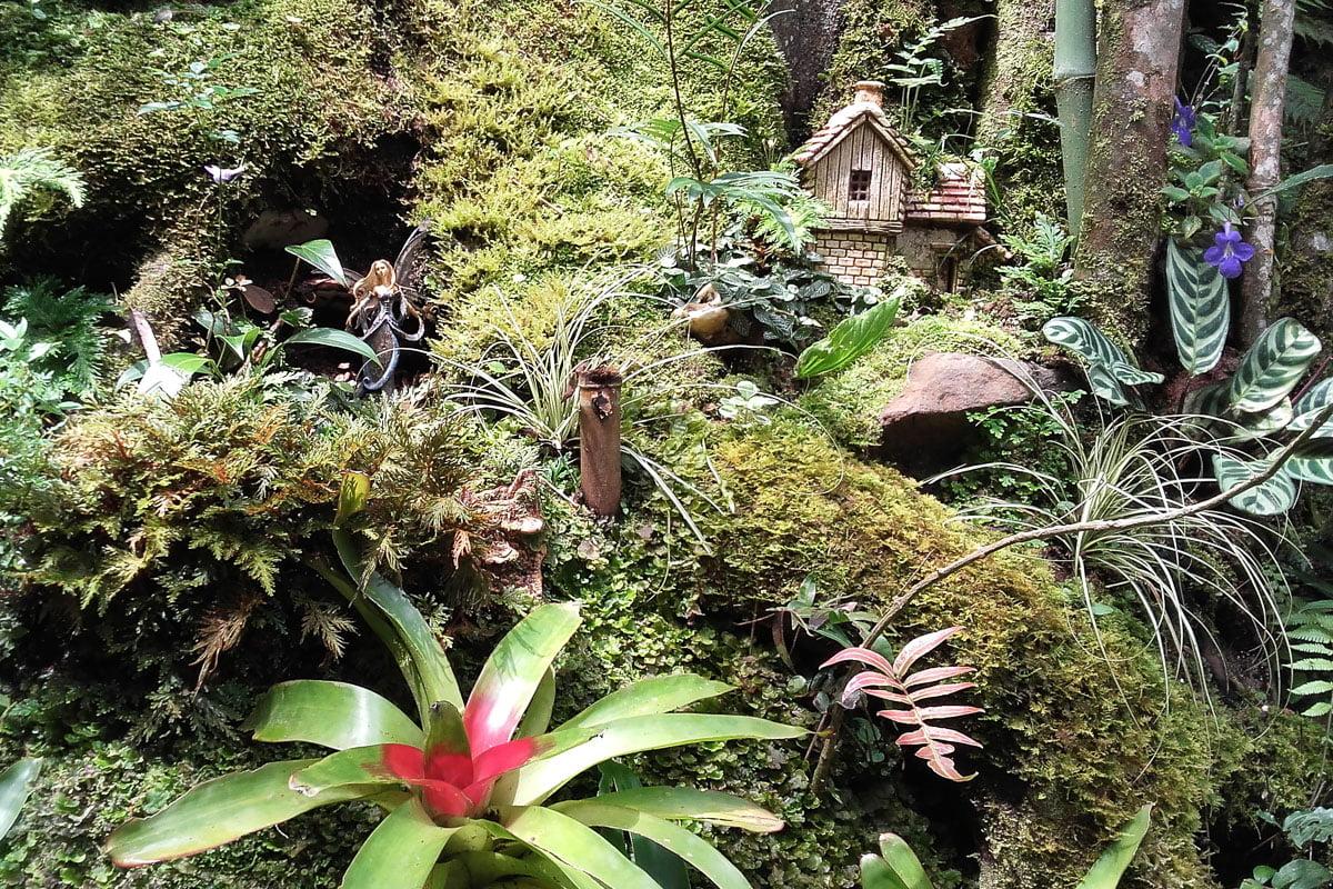 parcs visites autour de cali en colombie