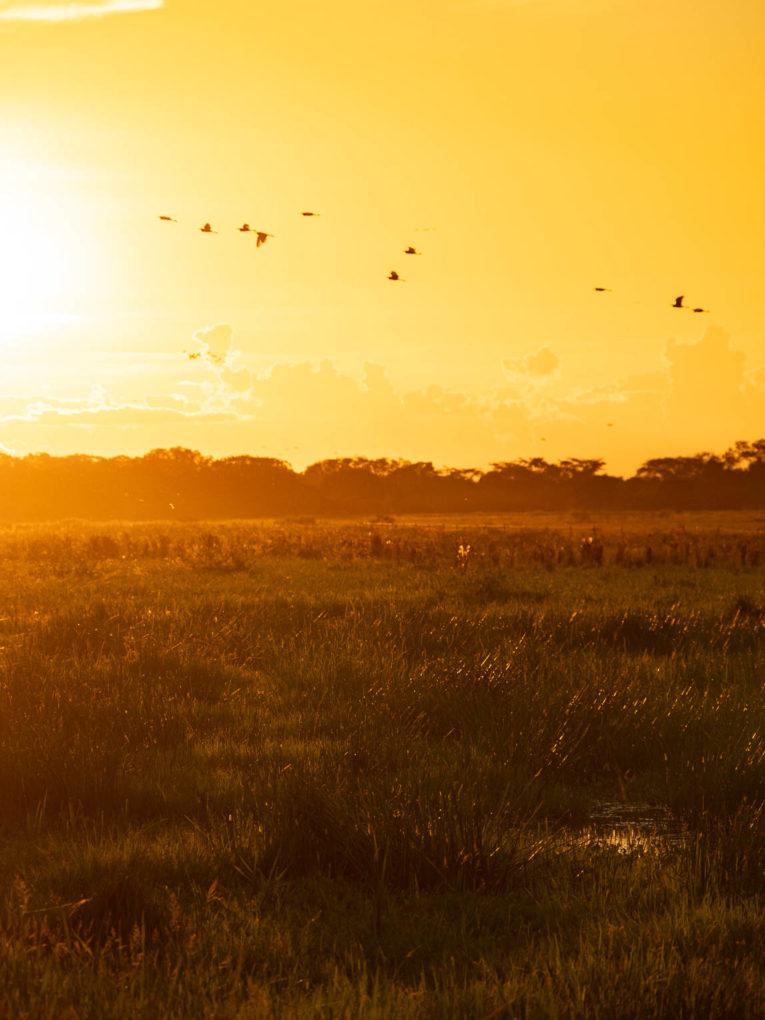 Coucher de soleil dans le Casanare