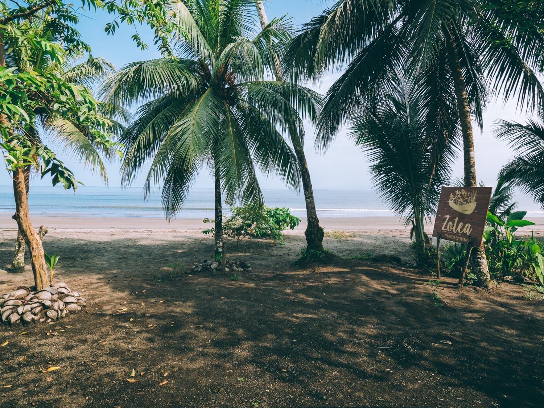 Coquí, Que faire à Nuquí et alentours sur la côte pacifique du Choco en Colombie